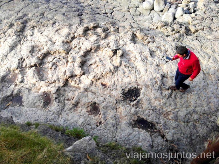 Huellas de los dinosaurios en la playa La Griega. Qué ver en Ribadesella y alrededores