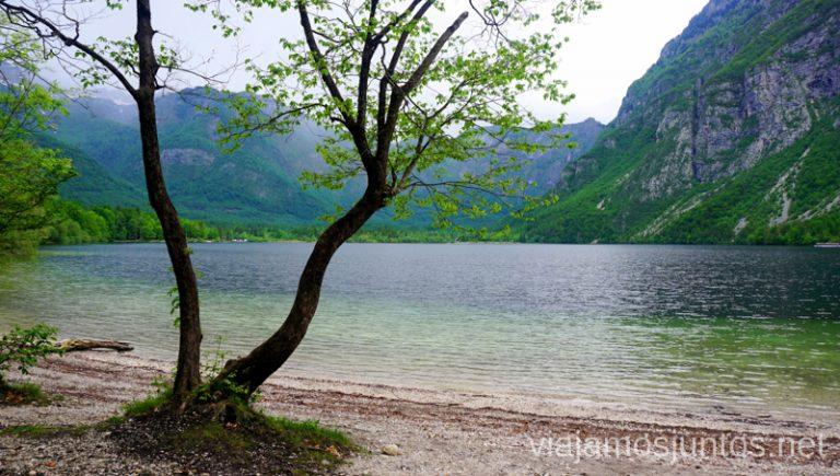 Paseando alrededor del lago Bohinj. Qué ver y hacer en Eslovenia Campervan en Eslovenia #EsloveniaJuntos