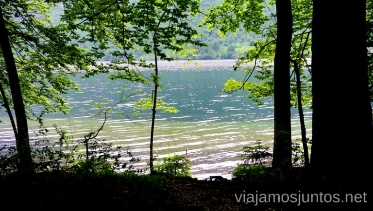 Uno de mis rincones favoritos del lago Bohinj. Qué ver y hacer en Eslovenia Campervan en Eslovenia #EsloveniaJuntos