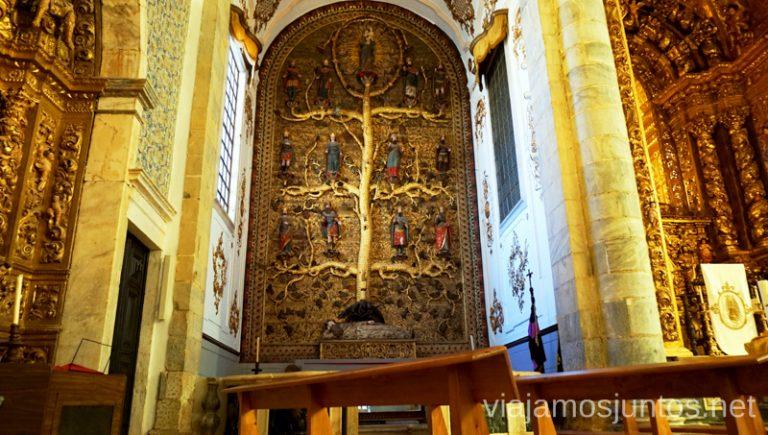 Árbol Genealógico. Qué ver en Olivenza #Experiencias_Alqeuva Extremadura