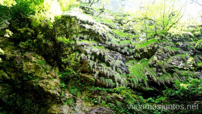Rocas húmedas. Qué ver y hacer en Valle de Soča Eslovenia #EsloveniaJuntos