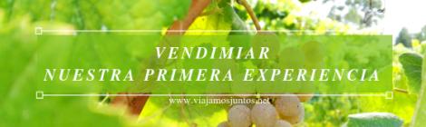 Primera experiencia de vendimiar en Galicia.