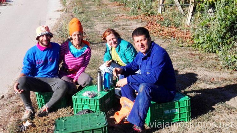 ¡Qué buena compañía para vendimiar en Galicia o donde sea!