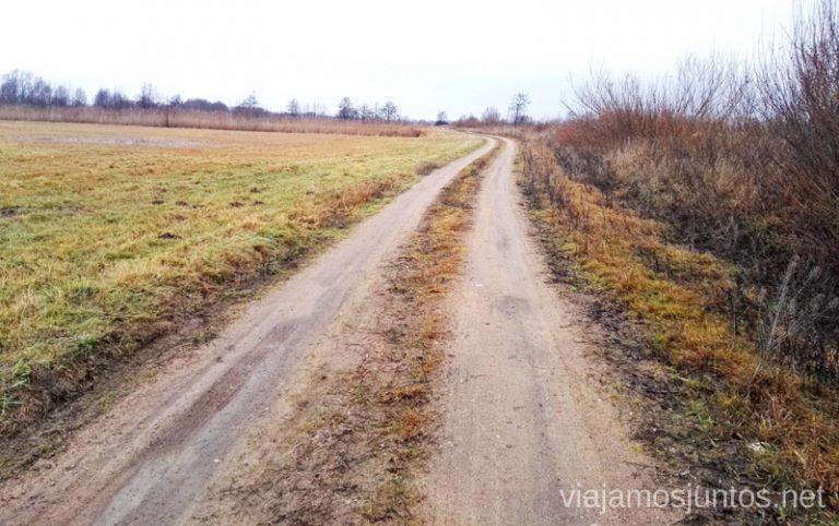 Carreteras del Parque Regional del Delta del Nemunas. Viajar a Países Bálticos en invierno. Lituania