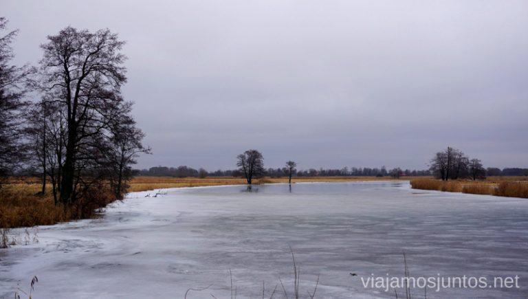 Vistas del río Nemunas. Viajar a Países Bálticos en invierno. Lituania