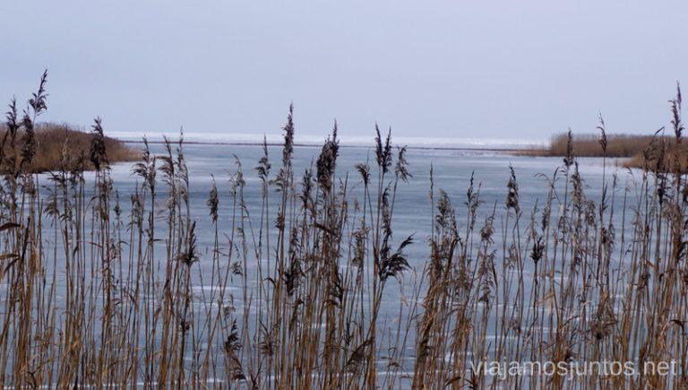 Vistas a la laguna de Curlandia al fondo desde el delta del Nemunas. Países Bálticos. Viajar a Países Bálticos en invierno. Lituania