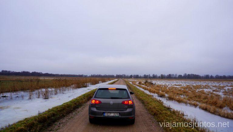 Recorriendo carreteras del el Parque Regional Delta del Nemunas. Países Bálticos. Viajar a Países Bálticos en invierno. Lituania
