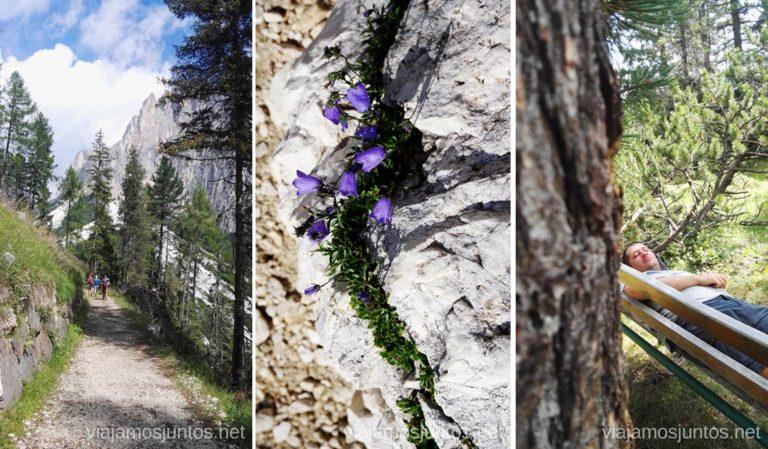 Camino entre el telesilla Vajolet II y Gardeccia. Italia #ItaliaJuntos Los Dolomitas