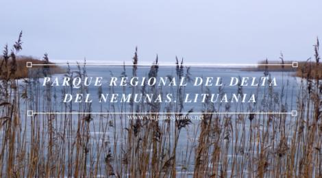 Parque Regional Del Delta del Nemunas. Viajar a Países Bálticos en invierno. Lituania