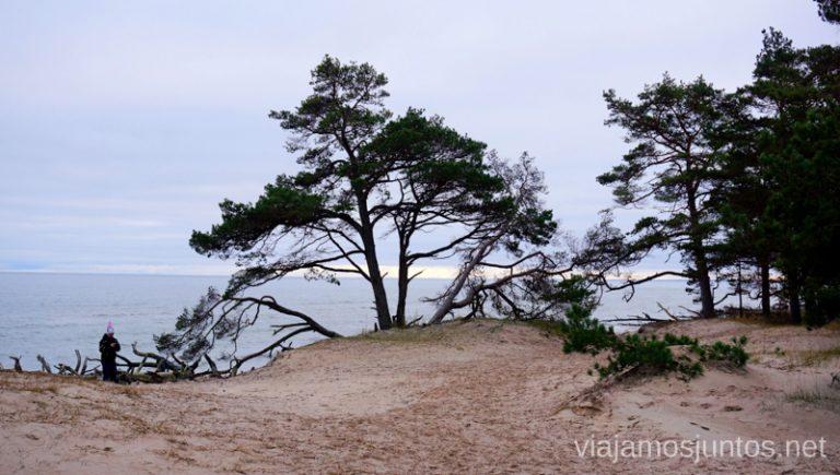 Vistas al Golfo de Riga desde el Cabo de Kolka. Viajar a Países Bálticos en invierno.