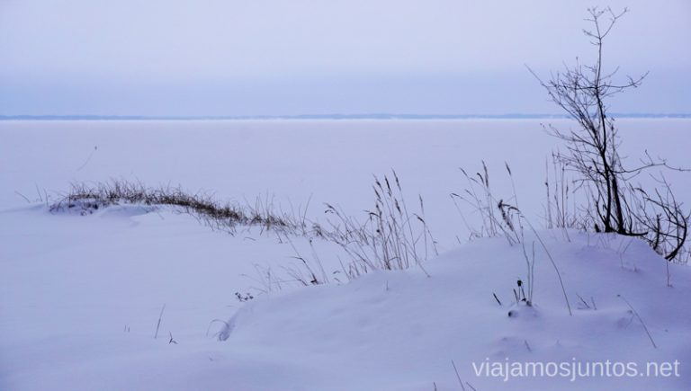 Paisaje congelado en el Lago Razna, Latgale - la región de los lagos de Letonia. Viajar a Países Bálticos en invierno.