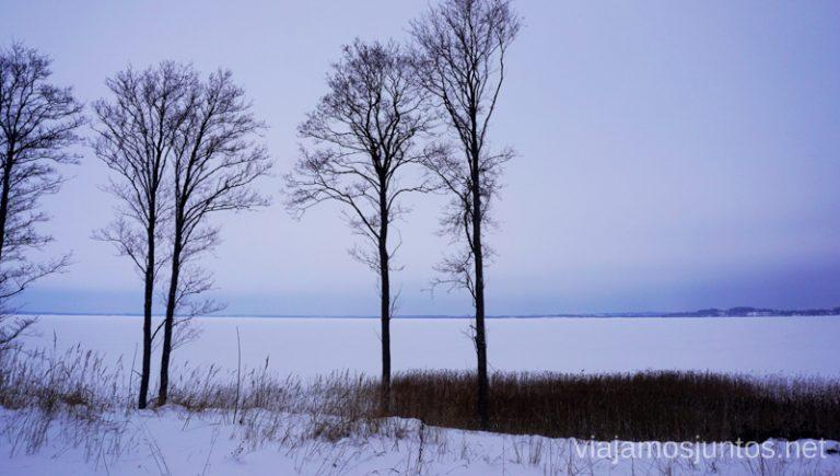 Vistas al lago congelado en Latgale, Letonia. Viajar a Países Bálticos en invierno.