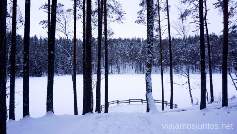 Lago Certoks, lago del diablo. Viajar a Países Bálticos en invierno.