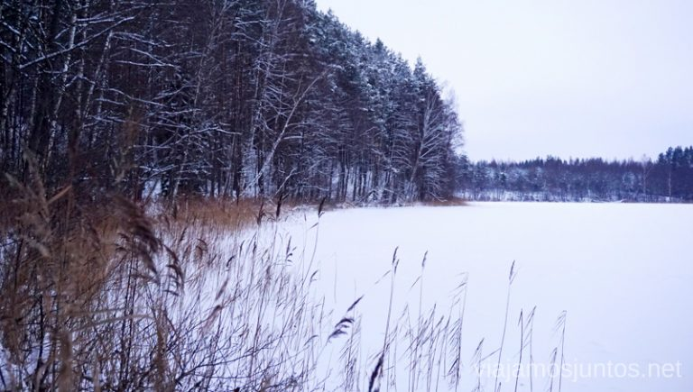 Atardecer nublado en el lago Jazinks, Letonia. Viajar a Países Bálticos en invierno.