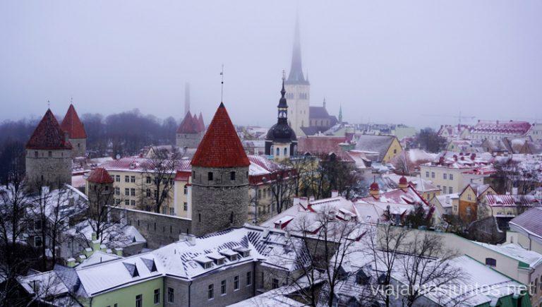 Vistas desde el mirador Kohtuotsa, Tallin. Viajar a Países Bálticos en invierno.