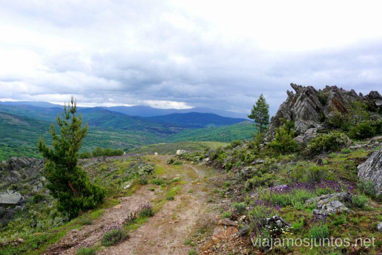 Caminos de la GR 303 en la Sierra del Rincón, Sierra Norte de Madrid.