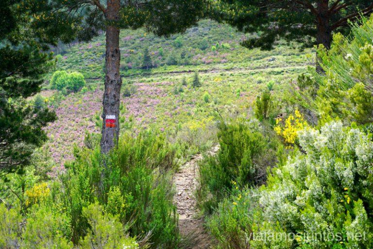 Atento a las marcas en GR 303 en la Sierra del Rincón.