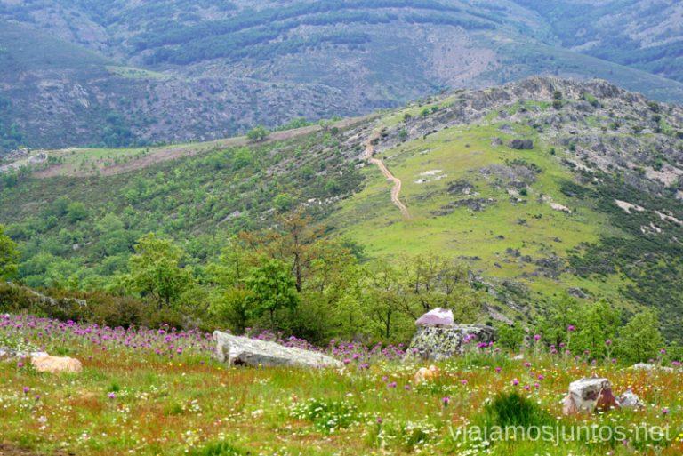 Vistas panorámicas. GR 303 - Gran ruta circular en la Sierra del Rincón, Sierra Norte de Madrid, Comunidad de Madrid