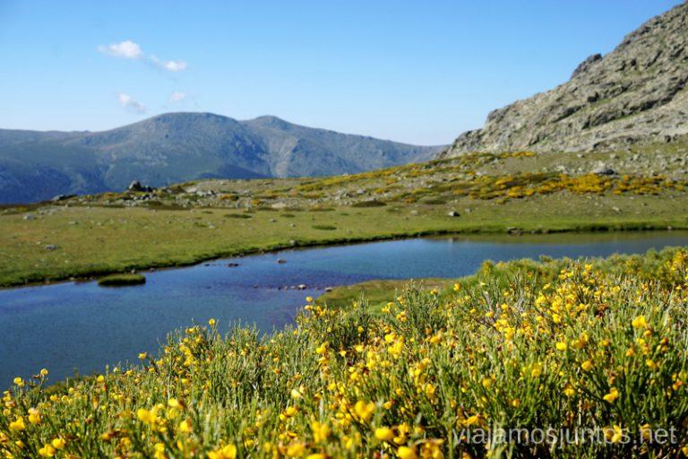 Laguna de los Pájaros, Parque Nacional de Guadarrama, en verano.