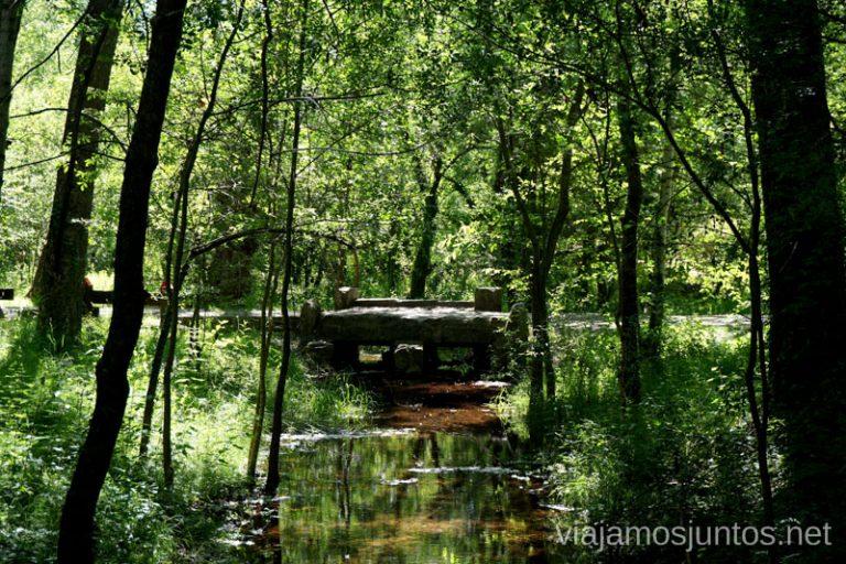 Puente en el Bosque Finlandés de Rascafría.