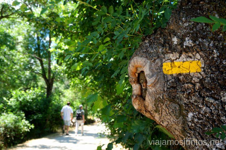Camino de el Ejido entre Rascafría y Oteruelo del Valle.