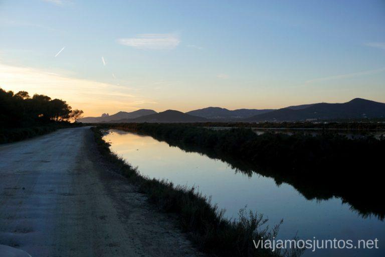 Camino hacía la playa de Ses Salines, Ibiza. Qué ver y hacer en Ibiza, Islas Baleares.