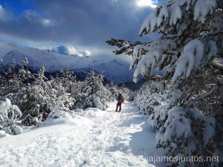Las Zetas en invierno.