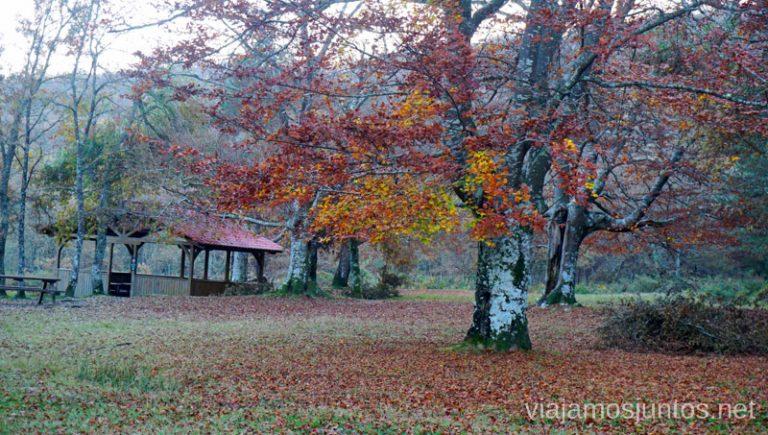 Comenzamos la ruta de las Burbonas en el Parque Natural de Gorbeia (Gorbea). Rutas de senderismo en el País Vasco. Qué ver y qué hacer.