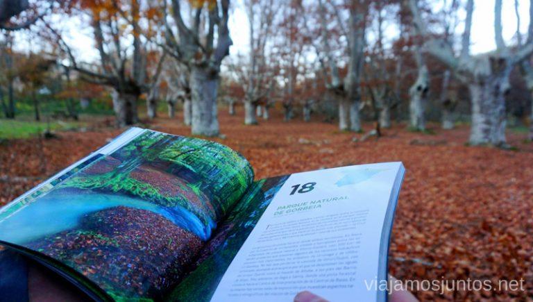 ¿Cuál es tu rincón favorito en el Parque Natural de Gorbeia? Rutas de senderismo en el País Vasco. Qué ver y qué hacer.