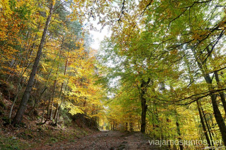 Paseo a las Cascadas de Puente Ra en otoño. La Rioja