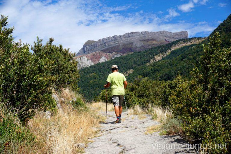 Subiendo por la Vía Romana en dirección Selva de Oza. Qué ver y hacer en el Valle de Hecho (Echo), Jacetania, Huesca, Aragón
