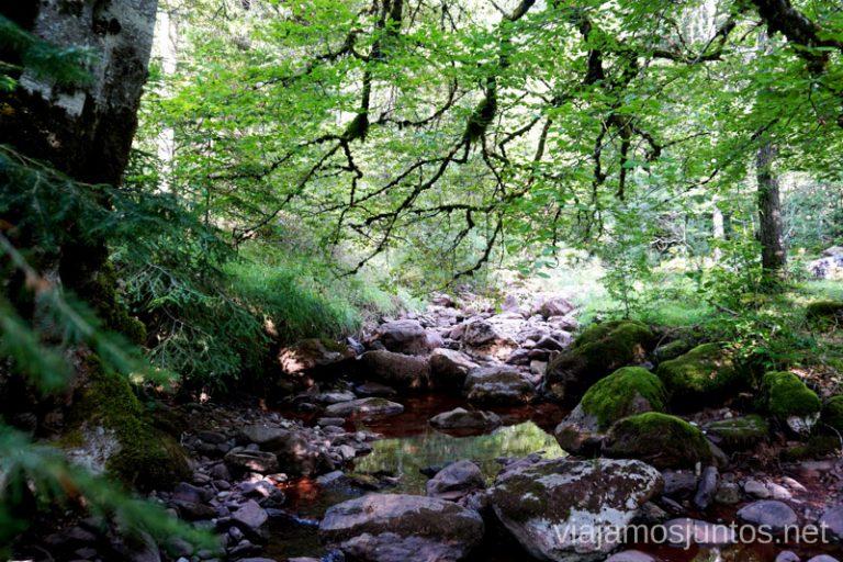 Selva de Oza. Qué ver y hacer en el Valle de Hecho, Aragón.