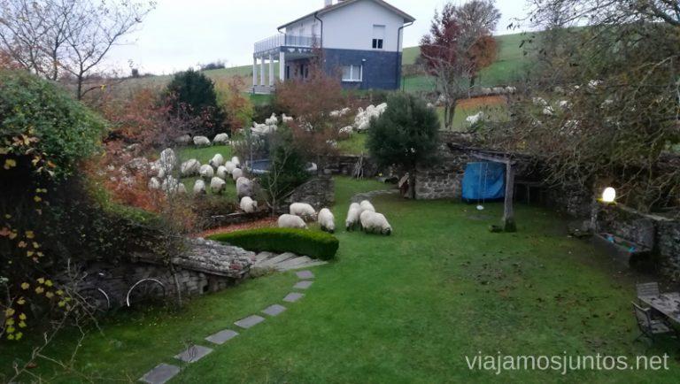 Visita mañanera en la casa rural. Rutas de senderismo en el País Vasco. Qué ver y qué hacer.