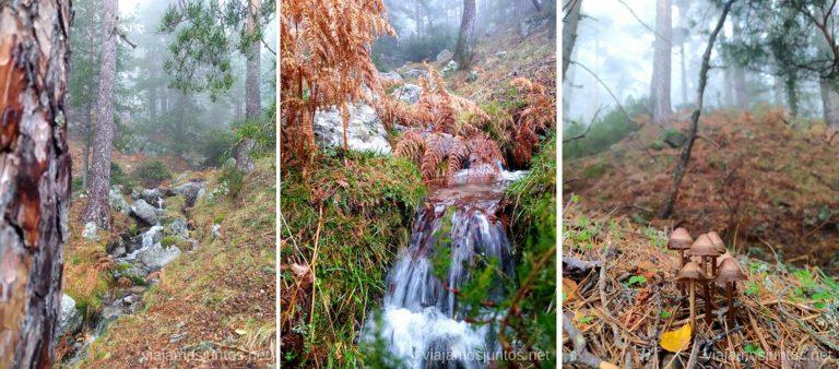 Senda Arias con pequeñas cascadas después de las lluvias. Rutas de senderismo desde el Puerto de Navacerrada, Madrid.