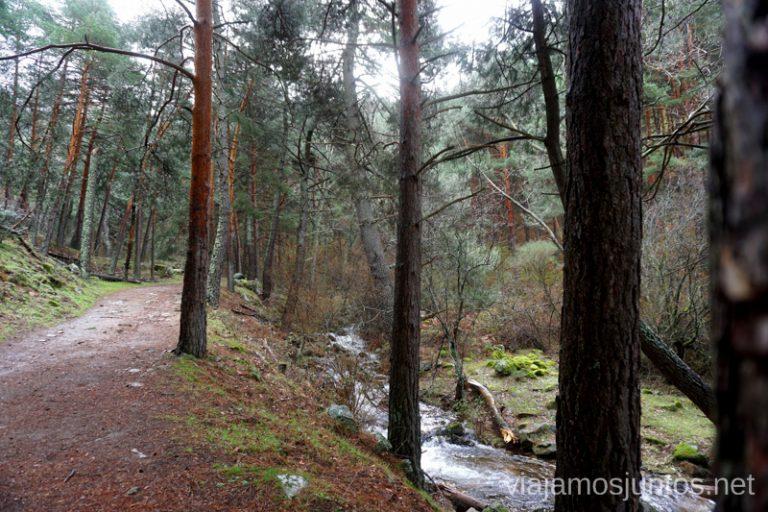 Pista de acceso al principio de la ruta a la Chorrera del Hornillo, Sierra Oeste de Madrid.