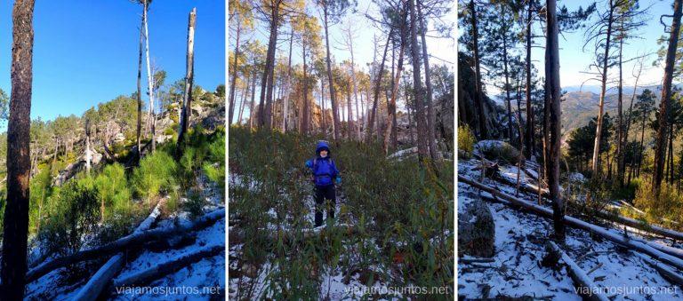 Atajando... Ruta de senderismo al Cerro o Risco de Santa Catalina.