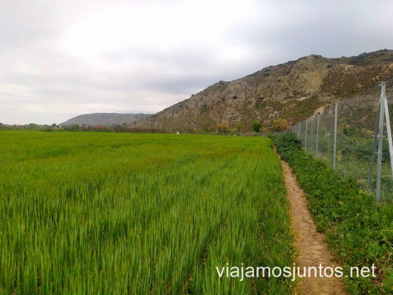 Camino entre los campos de labor y una valla en la ruta a la Mina del Consuelo, Chinchón.