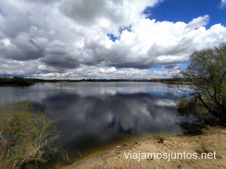 Una de las lagunas de Velilla de San Antonio.