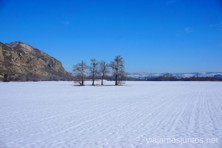 Ruta de senderismo nevada por Rivas-Vaciamadrid.