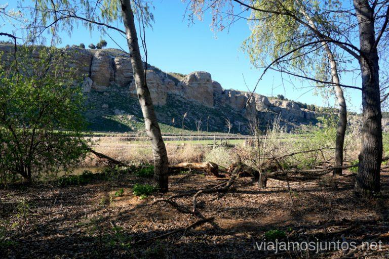 Avistando los cortados de la Marañosa a lo largo del río manzanares. Rutas de senderismo fáciles en Rivas-Vaciamadrid y sus alrededores.
