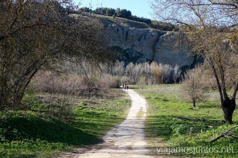 Rutas de senderismo fáciles en Rivas-Vaciamadrid y sus alrededores.