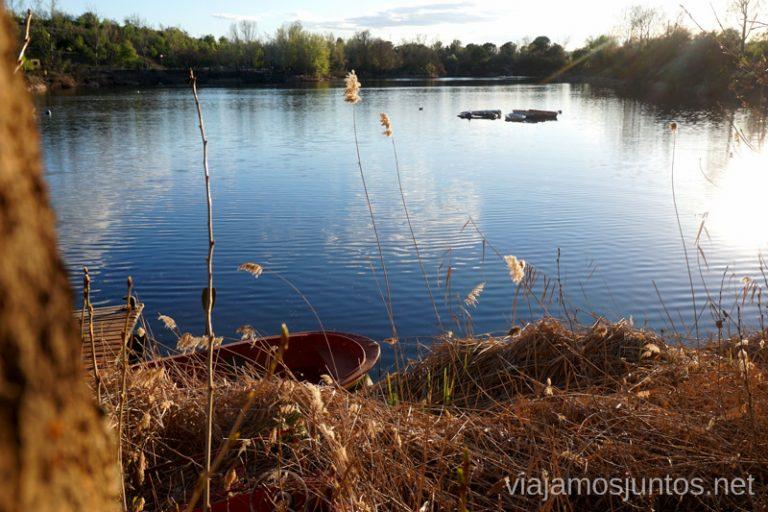 Laguna de las Madres, Arganda del Rey. Rutas de senderismo fáciles en el Parque Regional del Sureste.