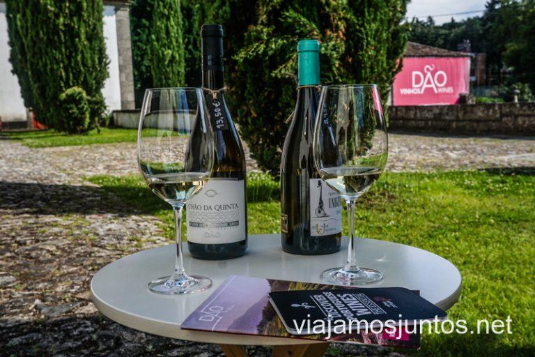 Degustación en el Solar Do Dao Wine. Nuestra ruta por el Norte de Portugal.