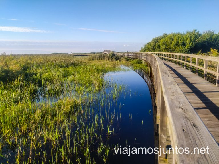 Passadiços da Barrinha de Esmoriz. Ruta por el Norte de Portugal.