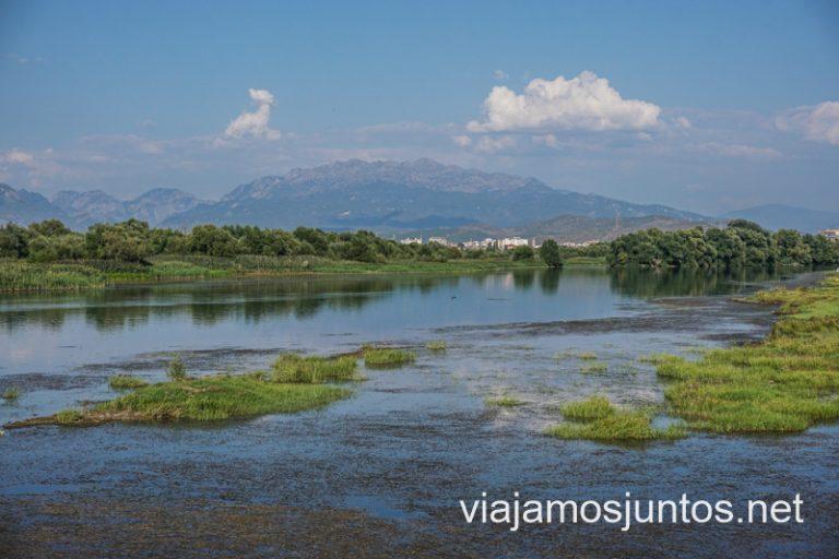 Lago Shkodrë o Skadar. Ruta por Albania por libre en transporte público (15 días).